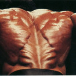 {Erector Spinae from  bodybuilder}