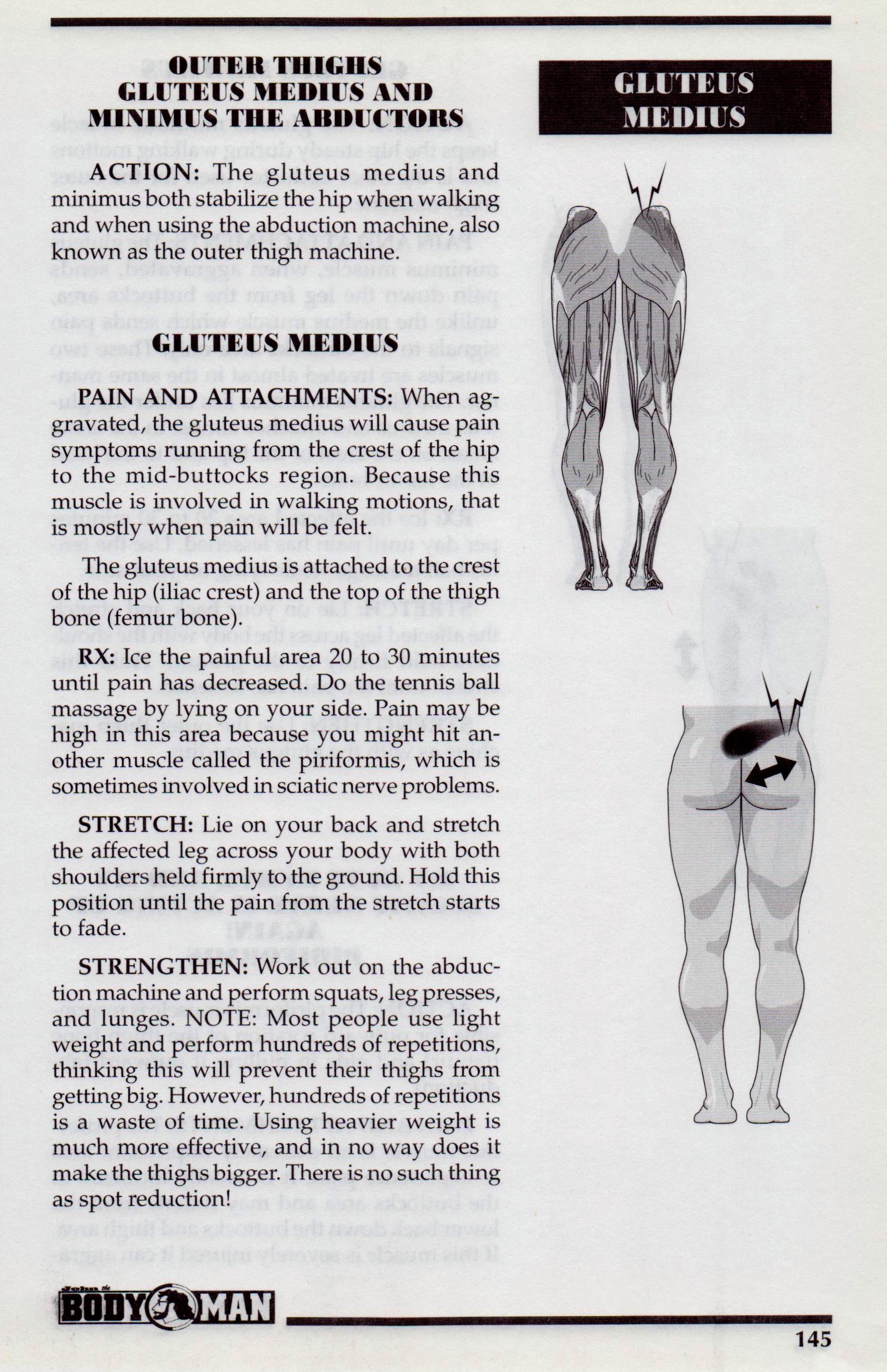 {Gluteus Medius p145}