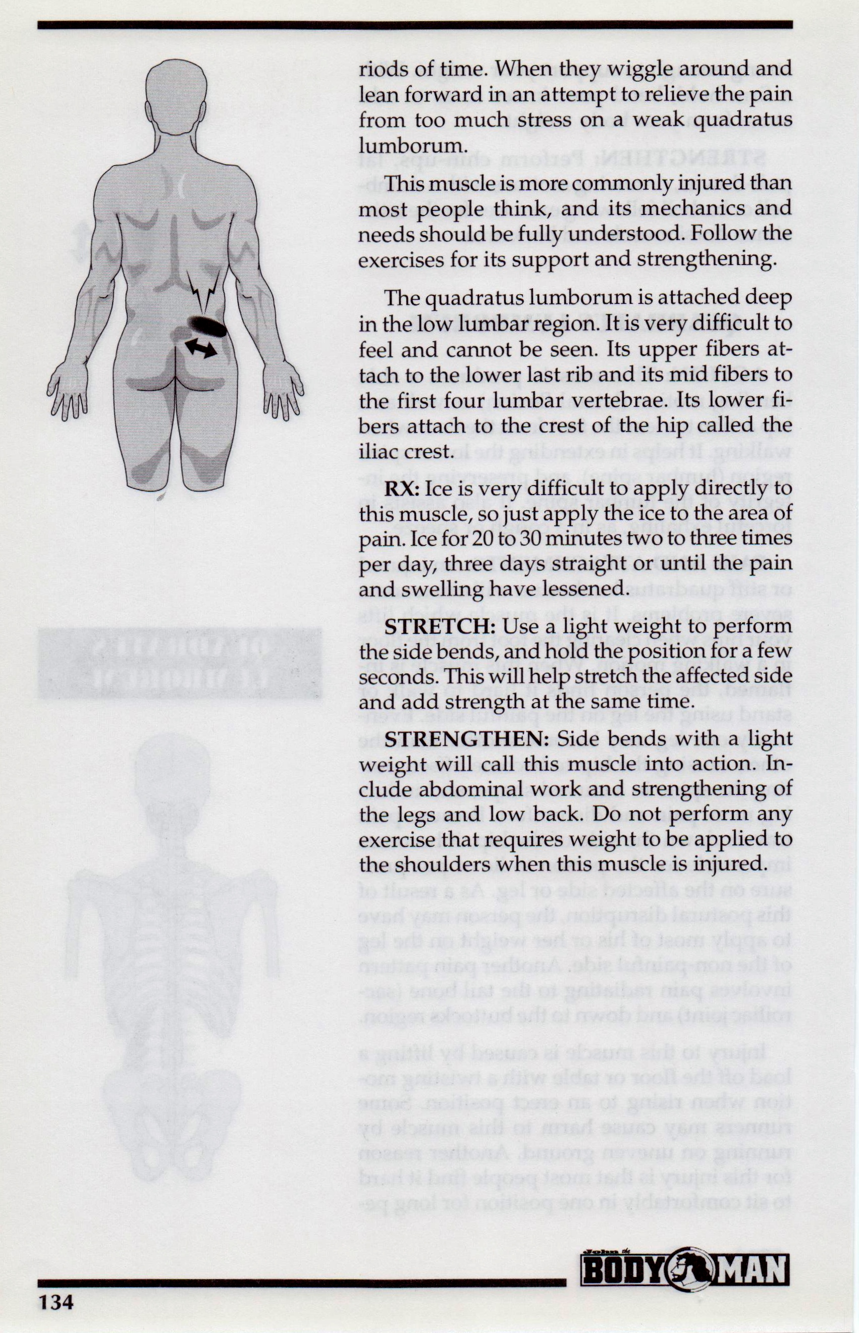 {Quadratus Lumborum P 134}