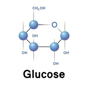 Stored sugar is called Glucose. Glucose is used in the Glycolytic system and will create energy ATP in greater quantities in less time.
