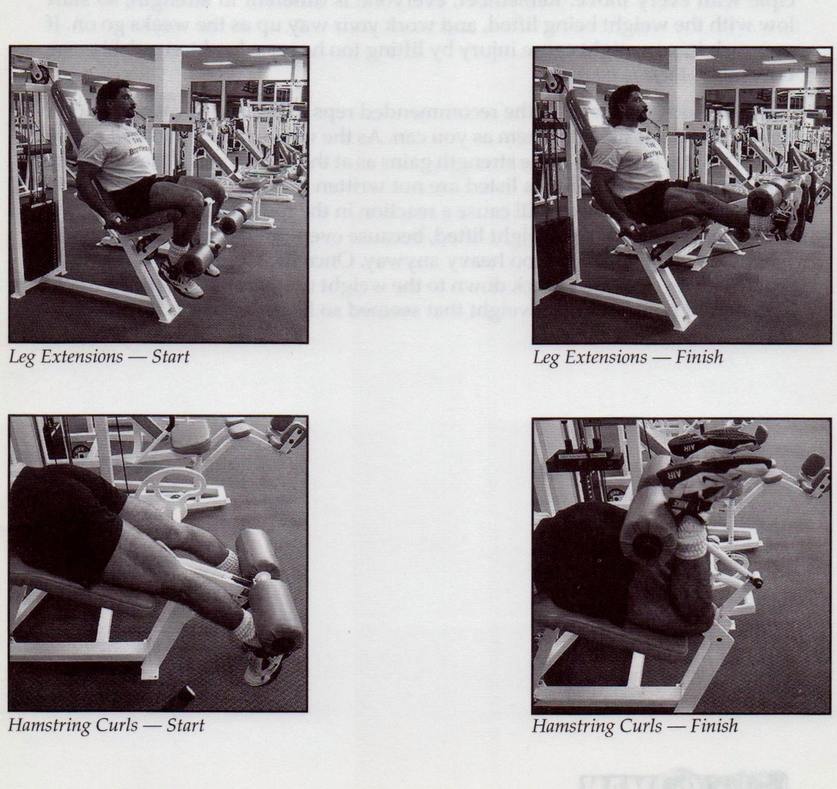 {Quadriceps and Hamstrings} {Commit to be Fit p186}